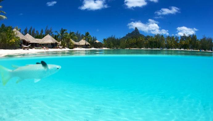 Le Meridien Bora Bora Tahiti By Carl