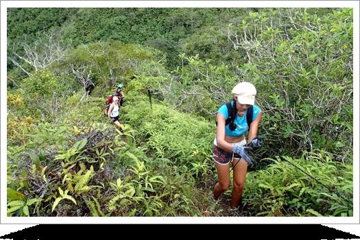 Coconut Trail Hike