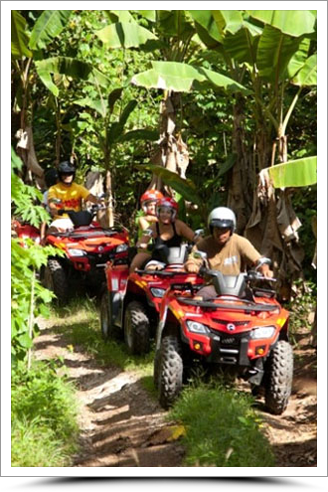ATV Tour in a banana field on Moorea